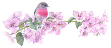 The Bird Sitting On The Blooming Branch. Hand Painted Watercolor Illustration.