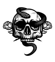 Skull With A Snake And Roses. Vector Illustration.