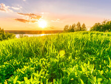 Beautiful Sunrise Or Sunset View From Grass To A Moutain Lake With Sun Glow And Cloudy Sky Above The Water And Forest On The Background