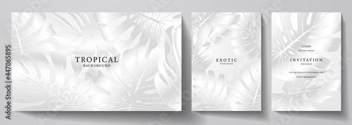 Fotografie, Obraz Exotic silver banner, cover design set