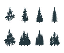 Icons Set Of Pine, Fir, Aspen, Elm Bushes. Vector Isolated Coniferous Forest Trees Silhouettes.