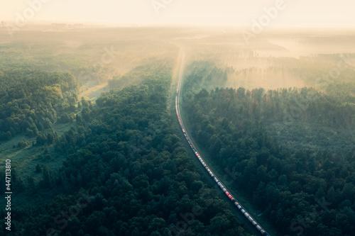 Fotografie, Obraz Train in summer morning forest at fog sunrise