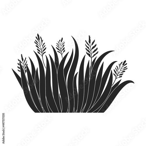 Fotografie, Obraz Green grass vector icon