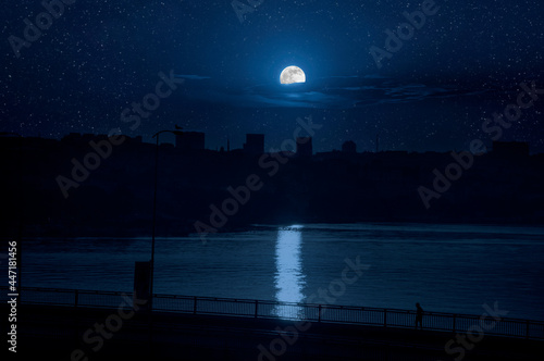 Fotografering Night lights on Hagia Sophia under a full moon at twilight in Istanbul Turkey