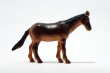 Horse On A White Background