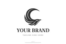 Simple Minimalist Eagle Falcon Hawk Head Logo Design Vector
