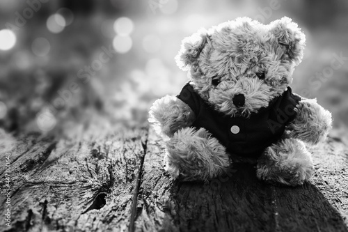 Fotografia, Obraz Black and white picture of teddy bear sitting on wooden floor in the morning with beautiful bokeh