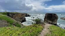 Dinosaur Caves Park Pismo Beach California Clip 06