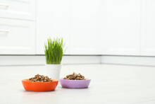 Wet Pet Food And Green Grass On Floor Indoors, Space For Text