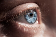 Horizontal Macro Photography Of An Eye Of A Young Woman With Light Blue Iris And Lashes On A Eyelid Without Makeup