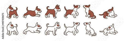 Bull terrier icon set Fototapet