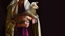 Shepherd Hold A Sheep In His Arms