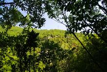 Panorama Lungo Il Sentiero Delle Cascate Del Fosso Di Teria A Secchiano Nelle Marche