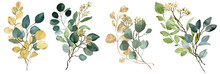Watercolor Green And Gold Seeded Eucalyptus Bouquets. Spring Greenery. Wedding Floral Illustration.