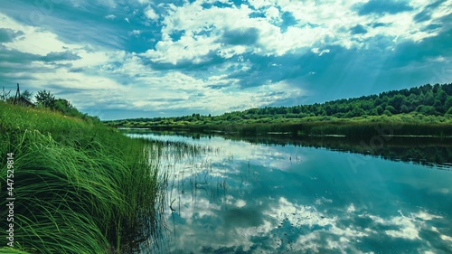 Fotografie, Obraz The water surface of the river with a reflection of the blue sky with clouds, green sedge along the banks