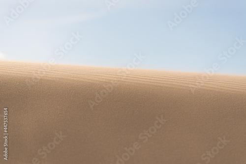 Cuadros en Lienzo Fine texture and lines of sandy dunes in a desert.