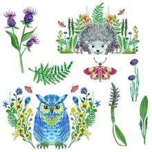Set Of Watercolor Illustrations With Owl, Hedgehog, Butterflies And Flowers. For A Card Or Invitation.