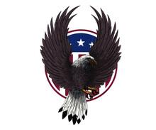 USA Eagle Stock Illustrations, Logo Icon Vector T Shirt Design Print Ready Concept Idea