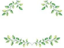 新緑の葉と枝のイラスト フレーム