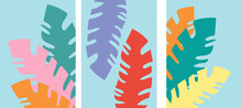 Collection Of Artistic Abstractions With Tropical Plants (multicolored Palm Leaves) On A Colored Background