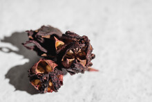 Bowl With Dried Hibiscus Or Roselle Flowers Used For Preparing Healthy Refreshing Tea On Marble Table