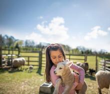 UK, North Yorkshire, Girl (6-7) Holding Lamb In Organic Farm