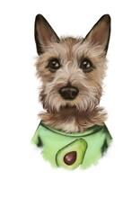 Digital Illustration. Brabancon Dog Portrait In T-shirt With Avocado