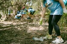 Volunteer Picking Plastic Bottle In Forest
