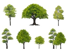 Vector Watercolor Green Tree Side View Isolated On White Background For Landscape And Architecture Layout Drawing, Elements For Environment And Garden