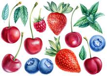 Berries Blueberries, Raspberries, Sweet Cherries, Strawberries, Mint Leaves, Watercolor Illustration