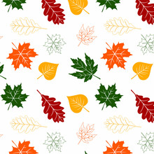 Vector Pattern Illustration Autumn Nature Background Graphic Design Drawing Leaves Yellow Tree Orange Floral Red Vintage Decoration Card Decor Outline Leaf Plant Card Paper Beauty Gold Banner Natural