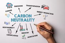 Carbon Neutrality Concept. Writes And Draws An Illustrative Image