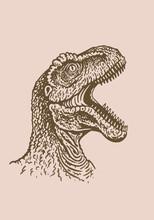 Graphical Portrait Of Raptor Roaring , Sepia Background, Vintage Illustration Of Dinosaur