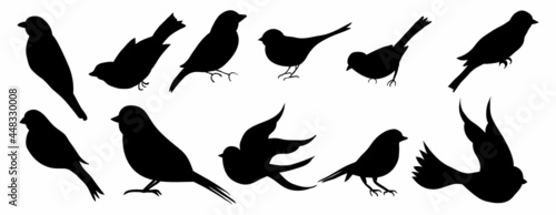 Tableau sur Toile bird silhouette vector collection set