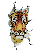 Illustration Of A Tiger Peeking Out Of A Crack In The Tiger Wall