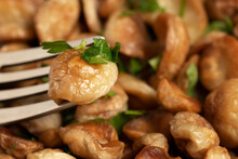 Fried Puffball Mushrooms On A White Plate With A Fork. Fried Mushroom Ready Dish, Close Up