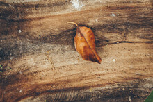 Old Wood Texture Pattern Background