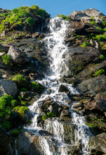 Mountain Waterfall Flowing Surrounded By Rocks And Blooming Flowers