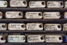 Atelier Reserve Vis Accesoires Bidons Rangement Ecrous Boulons Retro Travail Manuel