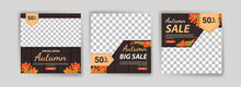 Autumn Sale. Autumn Big Sale. Autumn Mega Sale. Banner Vector For Social Media Ads, Web Ads, Business Messages, Discount Flyers And Big Sale Banners.