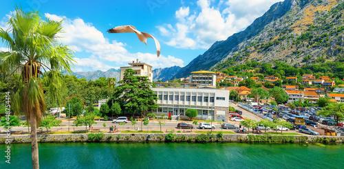 Fotografija River in Kotor