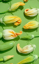 Different Zucchini Flowers On A Uniform Background