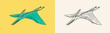 Dinosaur Pterosaur, Skeletons, Fossils, Winged Lizard. American Prehistoric Reptiles, Jurassic Animal. Engraved Vintage Hand Drawn Sketch For T-shirt Print Or Poster.