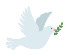 Dove Bird Flying