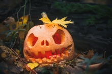 Jack O Lantern With Autumn Yellow Leaf On A Glowing Head. Utumn Halloween Holiday Concept Background. Mysterious Misty Evening Gray