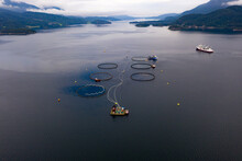 Salmon Farming, Fish Cages And Nets