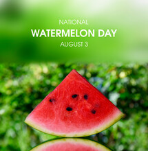 National Watermelon Day Stock Images. Juicy Slice Of Red Watermelon On A Bright Green Background Stock Images. Watermelon Day Poster, August 3. Important Day