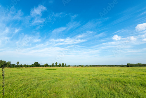 Beautiful summer day over green fields against blue cloudy sky