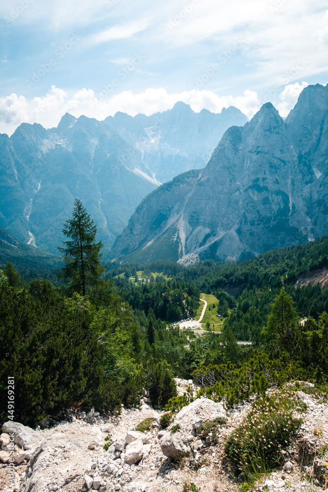 Vertical shot of a beautiful forest with Prisojnik mountain in the background