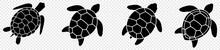 Turtle Marine Animal Icon. Sea Turtle Silhouette. Vector Illustration